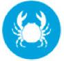icono crustaceos